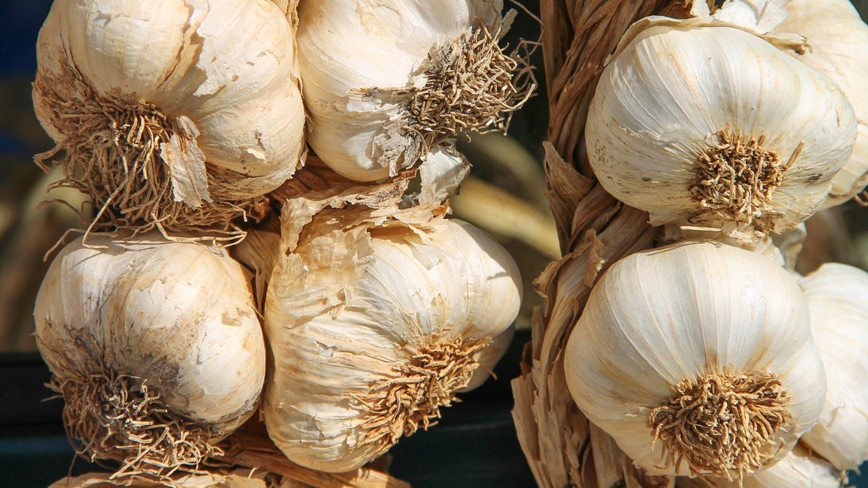 Knoblauch - die wichtigste Zutat für Spaghetti aglio, olio e peperoncino
